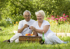 Picnic. Mature couple picnicked on the grass Stock Image
