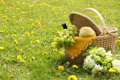 Picnic. Basket with french bread, grapes and wine Royalty Free Stock Images