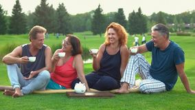 Picnic of adult mature people outdoors. stock video footage