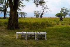 Tables set for Lunch in Ngorongoro Crater royalty free stock photography