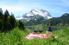 Picnic in Alpine meadow. Switzer Stock Photography