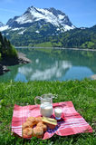 Picnic in an Alpine meadow, Switzerland Royalty Free Stock Photo