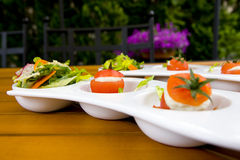 Picnic appetizers stock photography