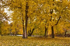 Picnic area along the Thornapple River Royalty Free Stock Image