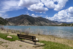 Picnic Area and Bench on Lake Stock Images