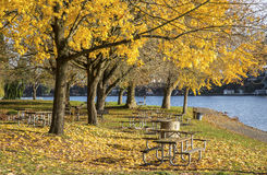 Picnic area Blue Lake park Oregon. Stock Photography