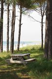 Picnic Area, Cape Lookout. A picnic table in a stand of trees looks out over the ocean surrounding Cape Lookout, North Carolina Stock Photo