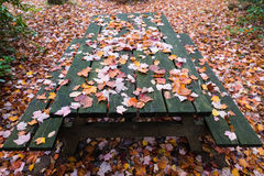 Picnic area in a fall setting Stock Photography