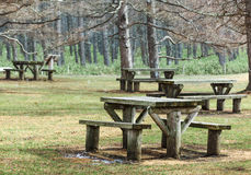 Picnic area in forest Stock Image