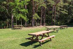 Picnic area in forest park Royalty Free Stock Photography