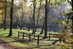 Picnic area. A picnic area in the forest by a small lake Stock Photography