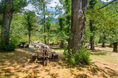 Picnic area in the forest Royalty Free Stock Photo