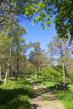 Picnic area in a park 02 Stock Image