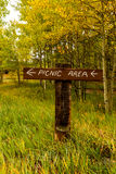 Picnic area sign in the mountains. Picnic area sign in the aspens royalty free stock photos