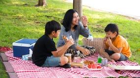 Picnic asiatico della famiglia Fotografia Stock Libera da Diritti