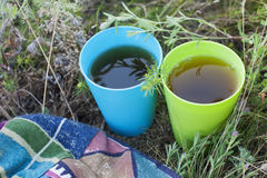 Picnic attributes. Two cups with flower tea at the nature Royalty Free Stock Photo