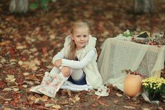 Picnic in the autumn forest Stock Photo