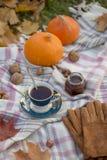 Picnic autunnale con tè alla coperta di lana fotografia stock