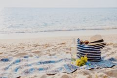 Picnic background with bag, grape and white wine by blue sea. Picnic background with bag, grape and white wine on the beach by blue sea Royalty Free Stock Images