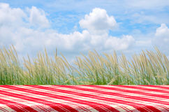 Picnic Background with Picnic Table. Outdoor Picnic Background with Picnic Table Royalty Free Stock Photo