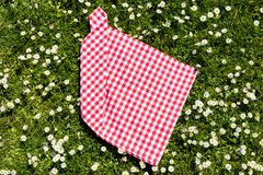 Picnic background. Red checkered picnic cloth on a daisy meadow. Topview.  royalty free stock photos