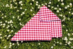 Picnic background. Red checkered picnic cloth on a daisy meadow. Topview.  stock images