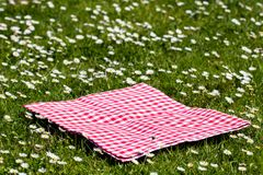 Picnic background. Red checkered picnic cloth on a daisy meadow with focus on napkkin. Beautiful backdrop for product montage.  royalty free stock photos