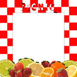 Picnic Background with Text Insert Royalty Free Stock Photo