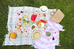 Picnic with white wine on green grass Royalty Free Stock Photography