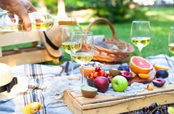 Picnic background with white wine and summer fruits on green grass, summertime party. Picnic background with white wine and summer fruits on green grass royalty free stock images