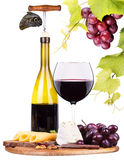 Picnic background with wine and food Royalty Free Stock Photo