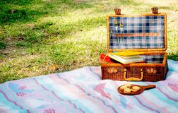 Picnic bag with blue pattern contains some books is on blue and pink carpet also near plate of cookies. The concept of relaxation royalty free stock photography