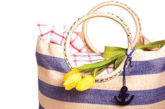 Picnic bag with flowers Stock Images