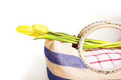 Picnic bag with flowers Royalty Free Stock Image