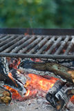 Picnic barbecue charcoals Royalty Free Stock Image