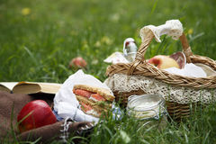Picnic bascket on green grass Stock Photography