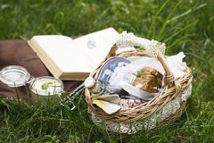 Picnic bascket on green grass Royalty Free Stock Images