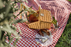 Picnic basket. With wine, cheese and salami outdoors Stock Photos