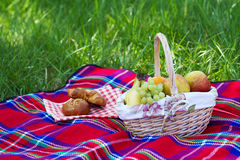 Picnic basket. Standing over a green grass background Royalty Free Stock Photography