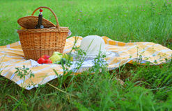 Picnic basket. On a meadow Stock Image