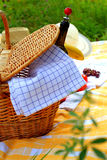 Picnic basket. On a meadow Stock Photos