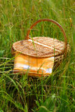 Picnic basket. On a meadow Royalty Free Stock Image