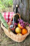 Picnic basket. Wickery basket for picnic with wine bottle and glass, fruits and field flowers Royalty Free Stock Photos