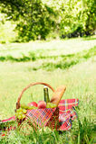 Picnic basket. With red napkin fool of fruits, bread and wine Stock Photos