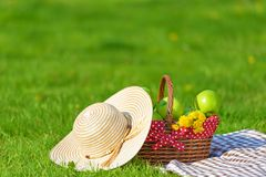 Picnic basket with apples and blanket outdoor in park. Picnic basket with apples and blanket outdoor royalty free stock image