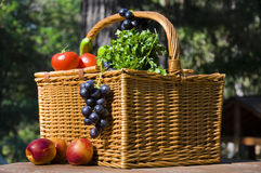 Picnic basket with autumn fruits Stock Image