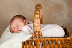 Picnic basket with baby Royalty Free Stock Image
