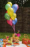 Picnic basket with balloons. And food on the grass Royalty Free Stock Images