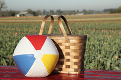 Picnic basket, beach ball in meadow Royalty Free Stock Images