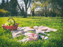 Picnic basket and blanket Stock Image
